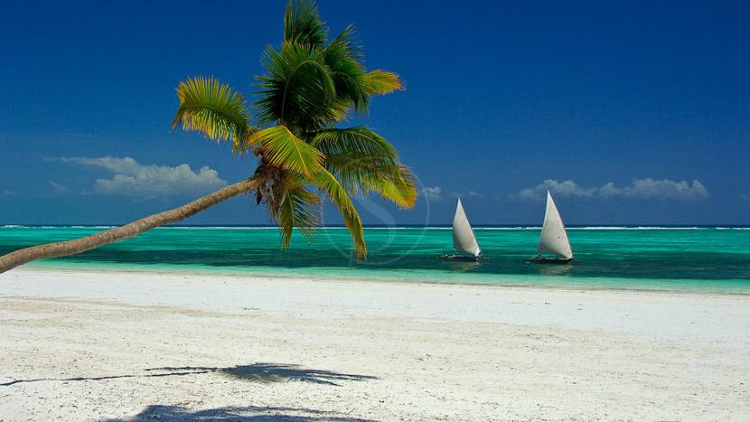 Blue Safari sur la côte de Zanzibar , Mélia Zanzibar, Tanzanie