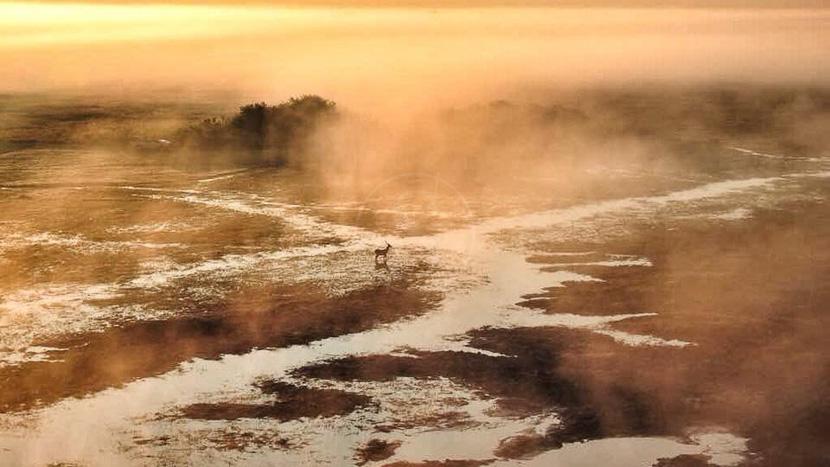 Les plaines de Busanga en montgolfière, Busanga Balloon Safari, Zambie