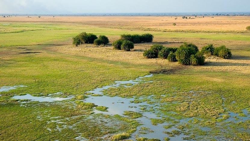 Parc national de Kafue, Busanga Plains, Zambie