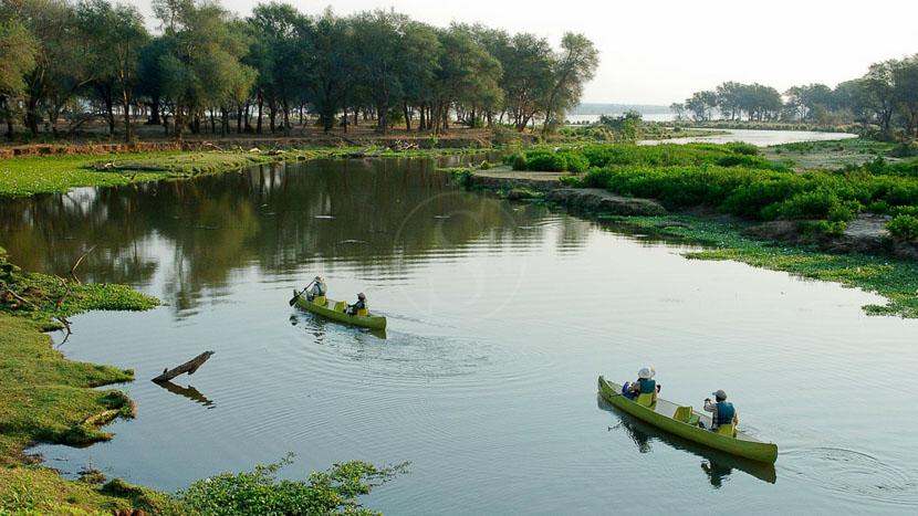 Pêche sur le Zambèze, Old Mondoro, Zambie