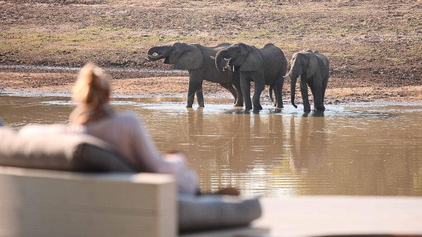 Parc national de South Luangwa, Chinzombo South Luangwa, Zambie © Time & Tide