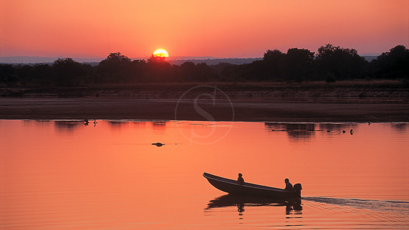 Parc national de South Luangwa, Robin Pope Safaris, Zambie