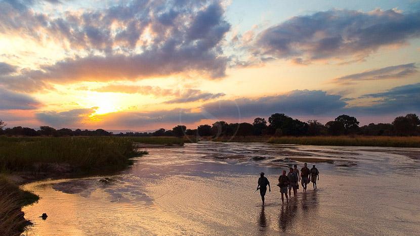 Safari à pied dans la vallée de Luangwa, Robin Pope Safaris, Zambie