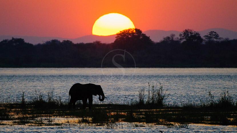 Les plus beaux couchers du soleil d'Afrique, Ruckomechi Camp, Zimbabwe © Dana Allen