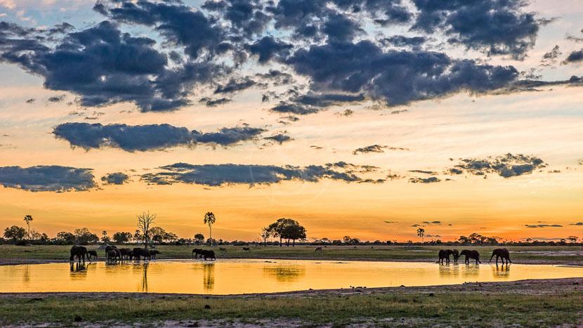 Safari en 4x4 dans le parc national Hwange, Linkwasha Camp, Zimbabwe © Mike Myers