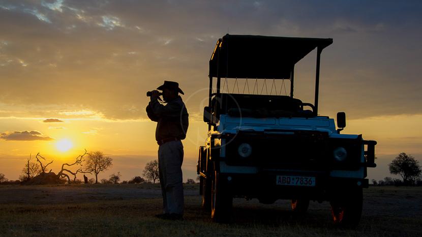 Safari en 4x4 au Zimbabwe, Davidson's Camp, Zimbabwe © Dana Allen