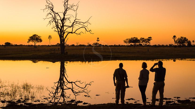 Safari à pied au Zimbabwe, Linkwasha Camp, Zimbabwe © Dana Allen