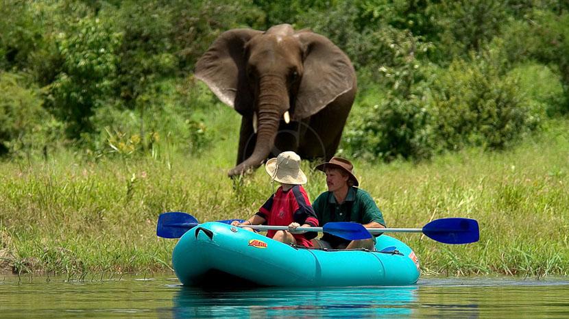 Les activités aux chutes Victoria, Activités à Victoria Falls