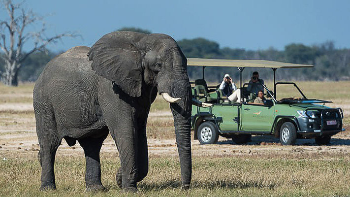 Safari en 4x4 dans le parc national Victoria Falls, Linkwasha Camp, Zimbabwe © Wilderness Safaris