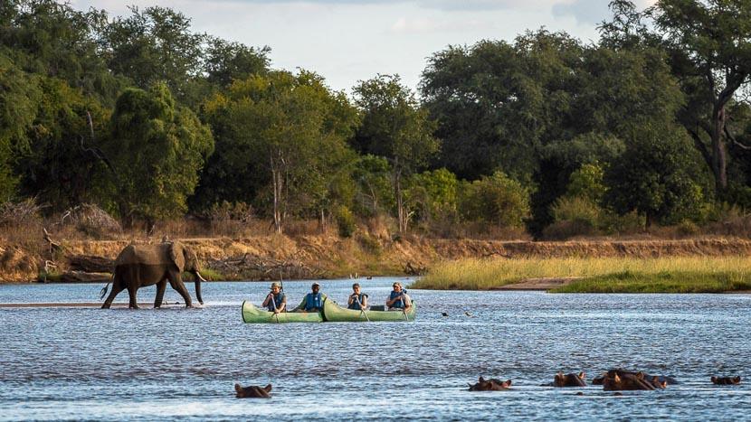 Canoë à Mana Pools, Ruckomechi Camp, Zimbabwe © Dana Allen