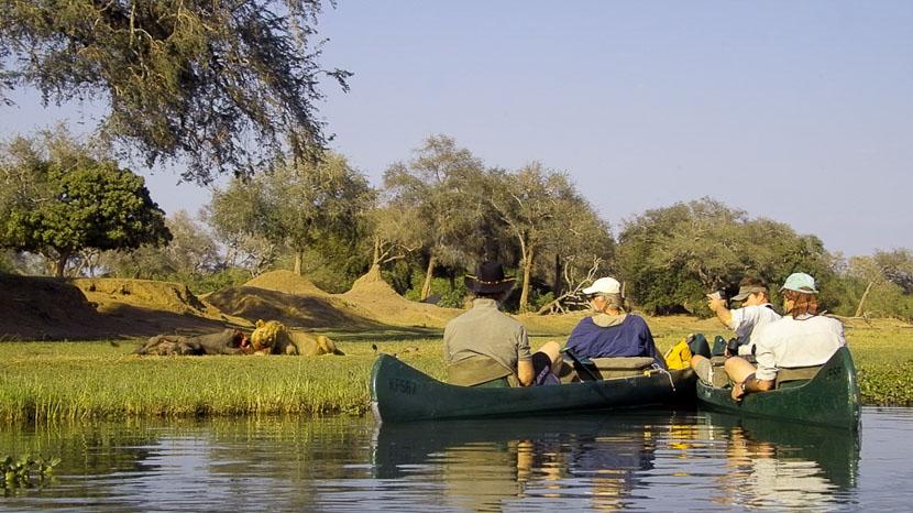 Canoë à Mana Pools, Safari en canoe sur le Zambèze, Zimbabwe © Humphrey Gumbo