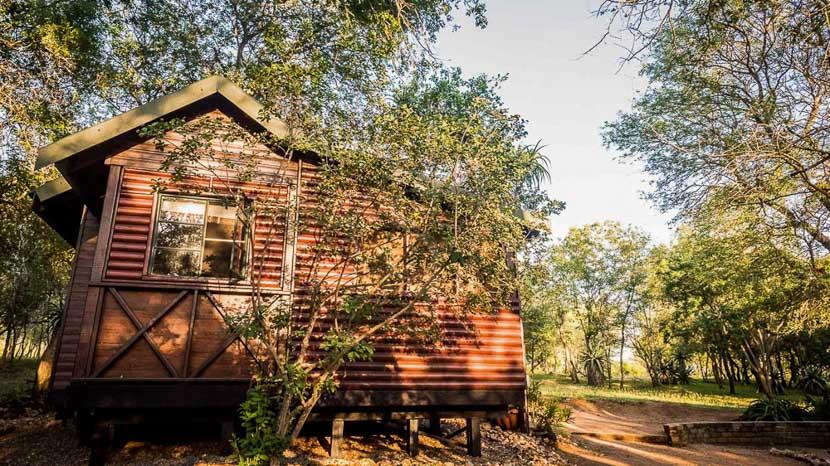 Avoca Private Bush Camp, Avoca Private Bush Camp, Afrique du Sud