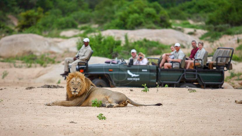 Dulini Lodge, Dulini, Réserve de Sabi Sand, Afrique du Sud © Dulini