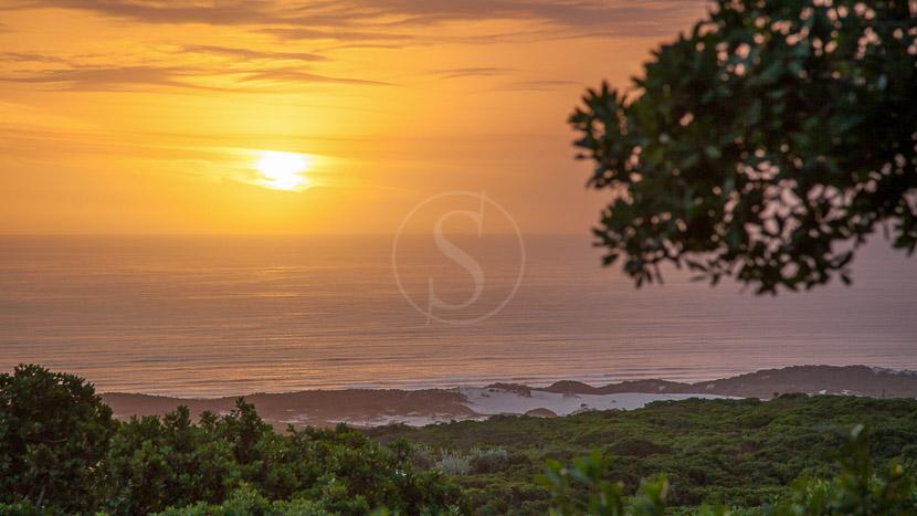 Réserve naturelle privée de Grootbos, Grootbos Garden Lodge, Afrique du sud © Grootbos