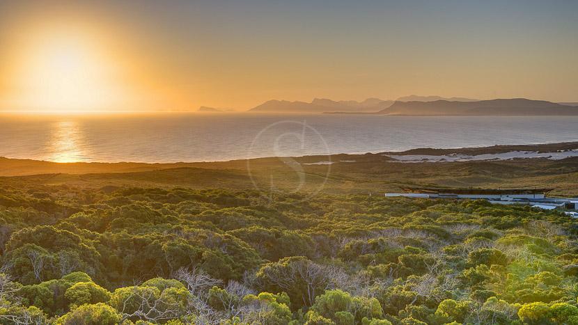 Réserve naturelle privée de Grootbos, Grootbos Private Nature Reserve, Afrique du sud © Grootbos