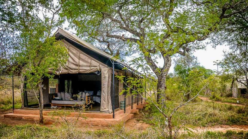Honeyguide Mantobeni Camp, Honeyguide Khoka Moya Camp, Afrique du Sud
