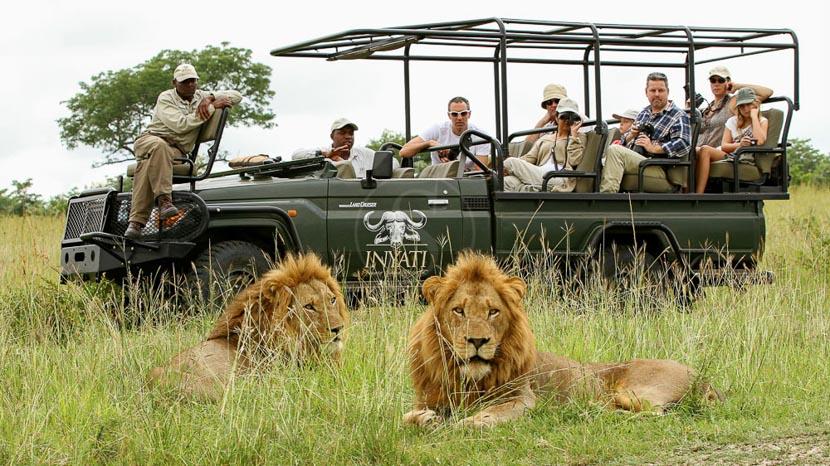 Inyati Game Lodge, Inyati Game Lodge, Afrique du Sud © Khimbini Hlongwane