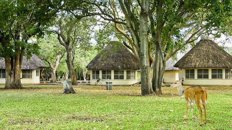 Lower Sabie Rest Camp, Bungalow de Letaba, Parc Kruger, Afrique du Sud