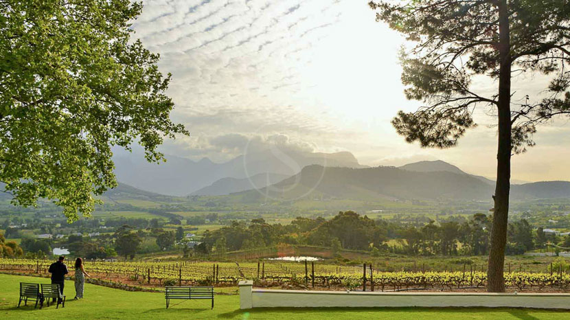 La Petite Ferme , La Petite Ferme, Franschhoek, Afrique du Sud