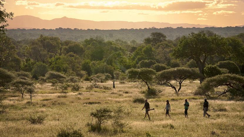 Lion Sands River Lodge, Safaris à Lion Sands, Afrique du Sud © More Properties