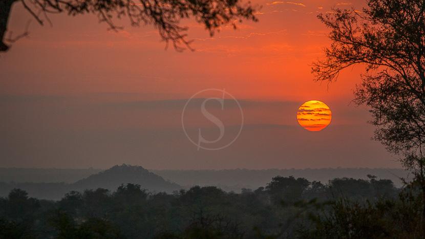 Londolozi Founders Camp, Safari à Londolozi, Afrique du Sud © Londolozi