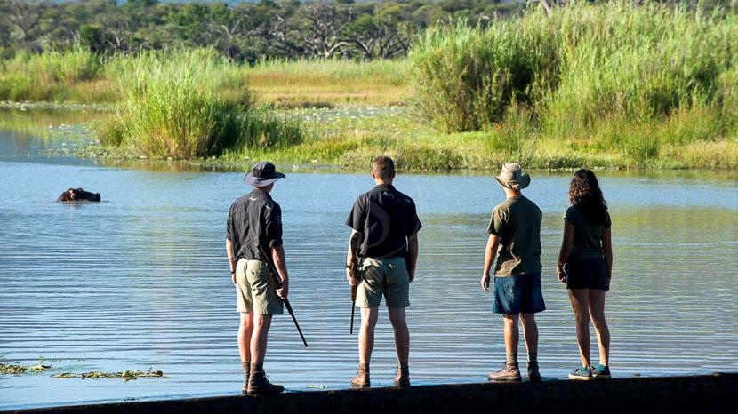 Marataba Safari Lodge, Marataba Trails Lodge, Afrique du Sud © More