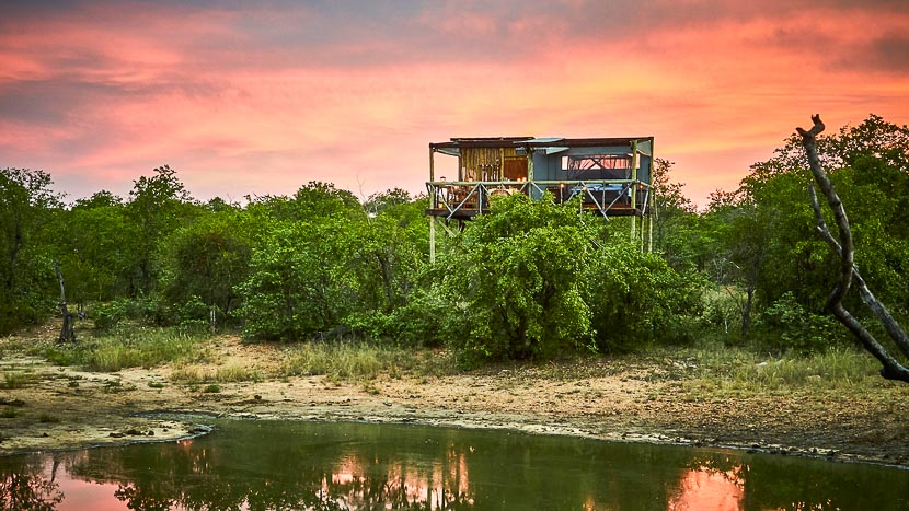 Motswari Private Game Lodge, Giraffes Nest à Motswari, Afrique du Sud © Motswari