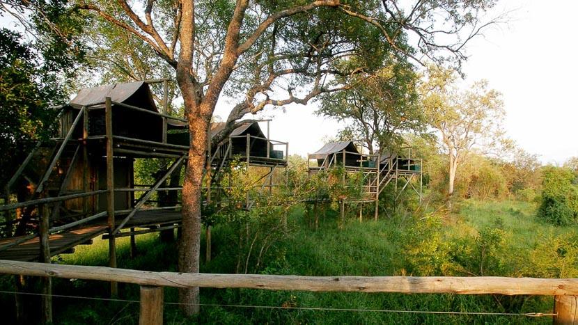Rhino Post Plains Camp , Under the Sky, Rhino Plains Camp