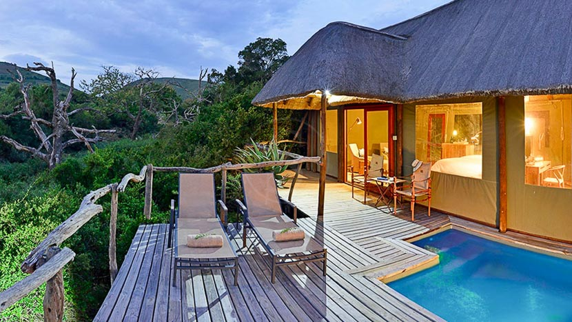 Shamwari Bayethe Tented Lodge, Shamwari Bayete Lodge, Afrique du Sud