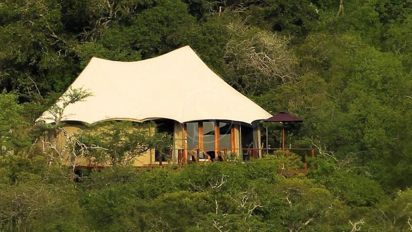Thanda Tented Camp, Thanda Tented Camp, Afrique du Sud