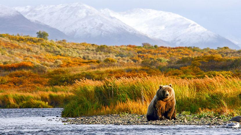 Katmai Wilderness Lodge, Ambiance d'Alaska, Etats-Unis