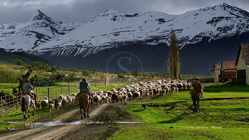 Estancia Nibepo Aike, Estancia Nibepo, Argentine
