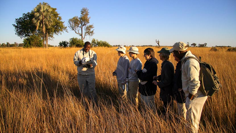 Camp Okavango , Camp Okavango, Botswana
