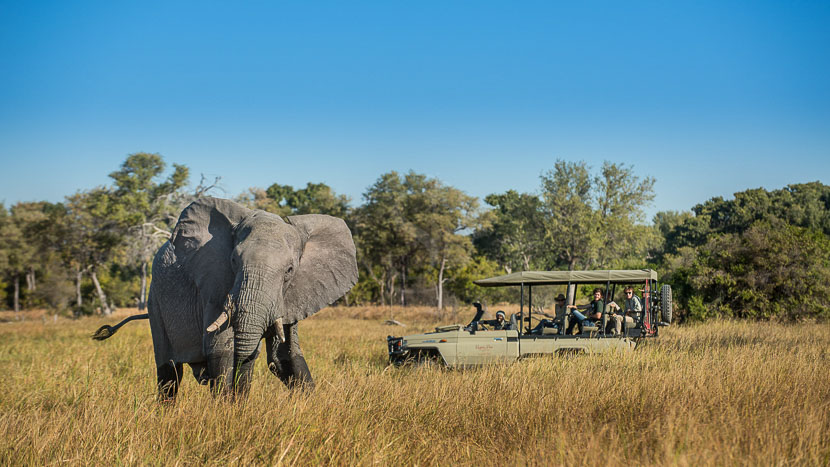 Hyena Pan Camp, Hyena Pan Camp, Botswana © Natural Selection