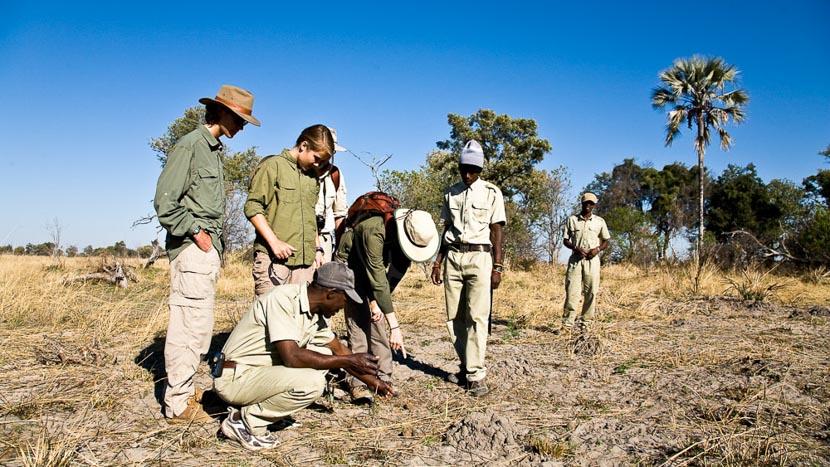 Oddballs' Enclave , Oddballs Camp, Botswana © Courteau
