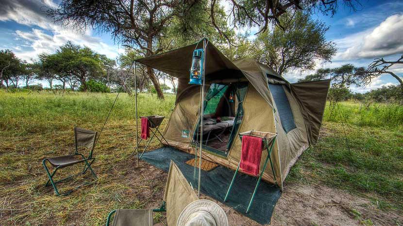 Safari Life Africa Camps Mobiles, Safari en campement itinérant, Botswana © SLA