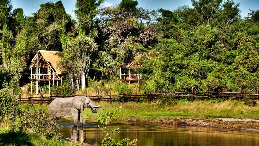 Savute Safari lodge, Savute Safari Camp, Botswana