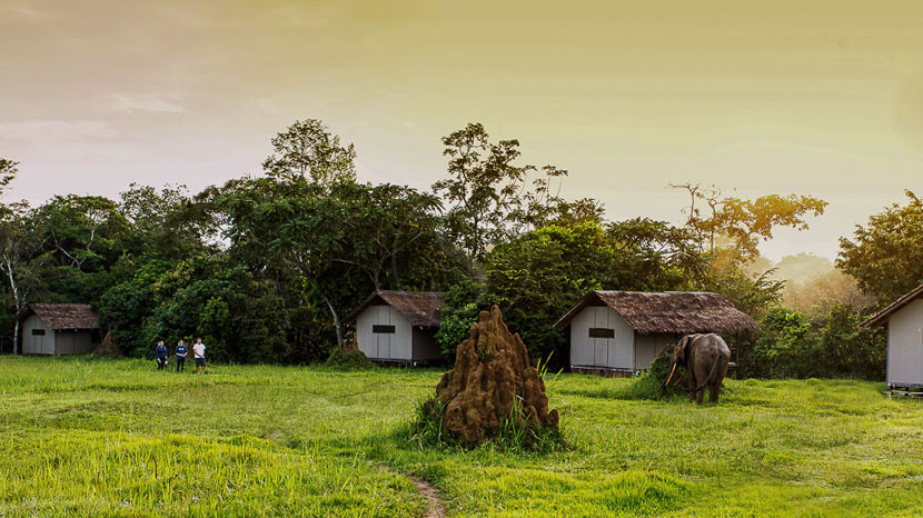 Mboko Camp, Mboko Camp, Congo
