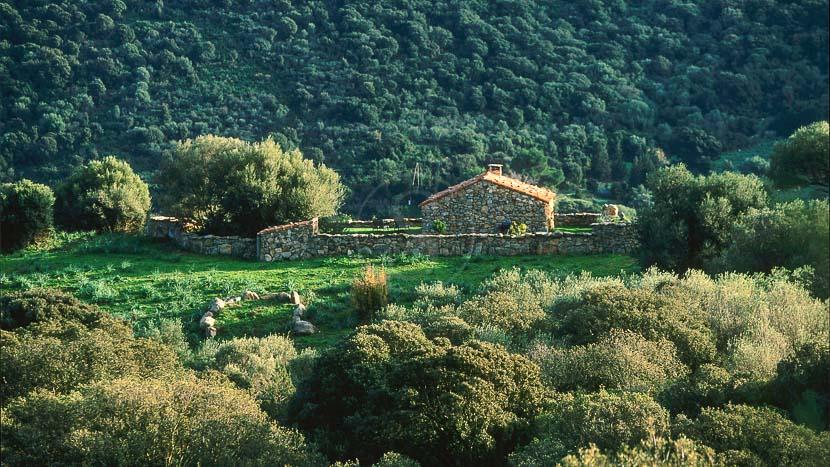 Domaine de Murtoli, France, Corse du Sud (2A), bergerie A Tiria, Domaine de Murtoli