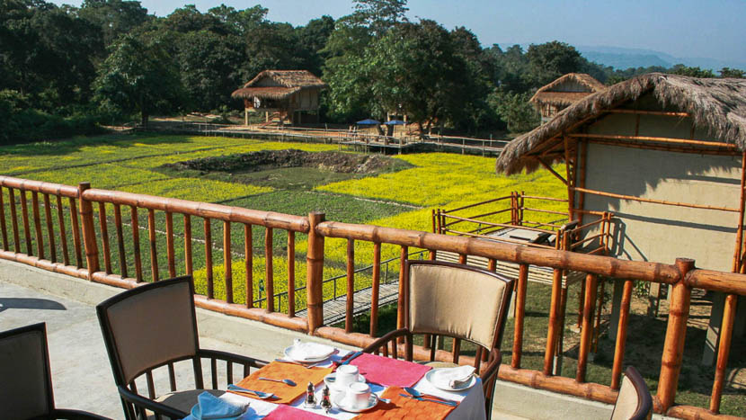 Diphlu River Lodge, Diphlu River Lodge, Inde