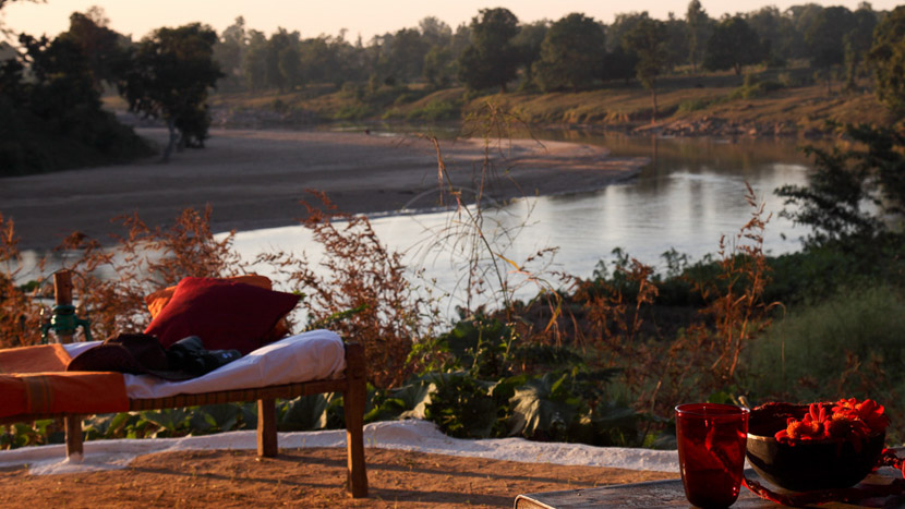 Flame of the Forest , Flame of the Forest Safari Lodge, Inde