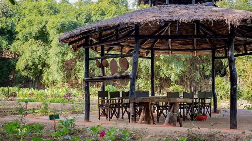 Kings Lodge, Kings Lodge Bandhavgarh, Inde