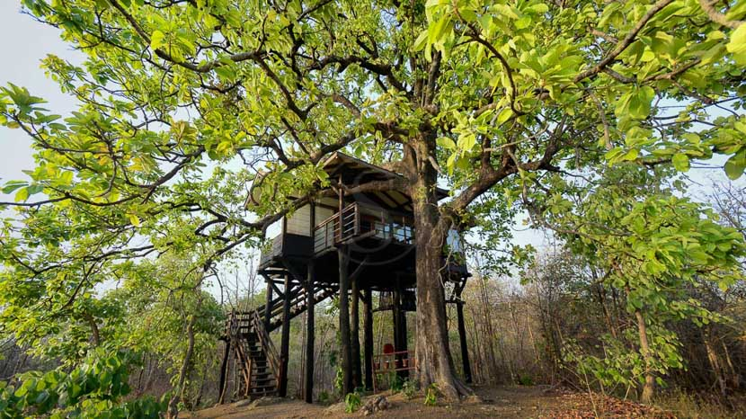 Pench Tree Lodge, Pench Tree Lodge, Inde