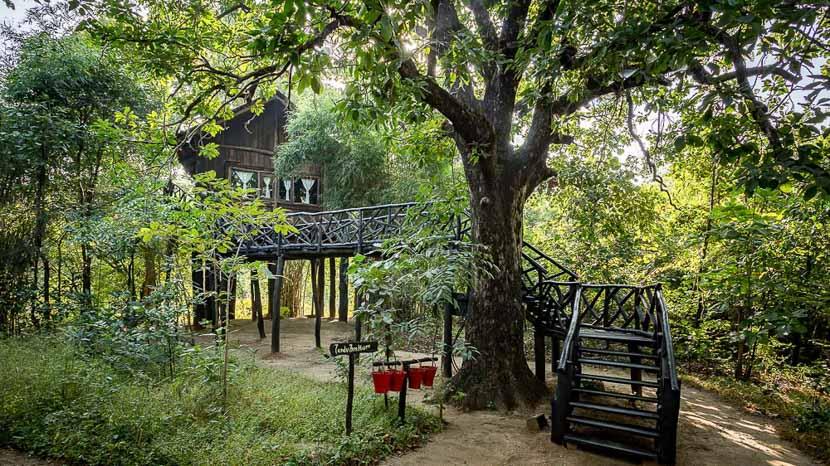 Tree House Hideway, Treehouse Hideaway Bandhavgarh, Inde