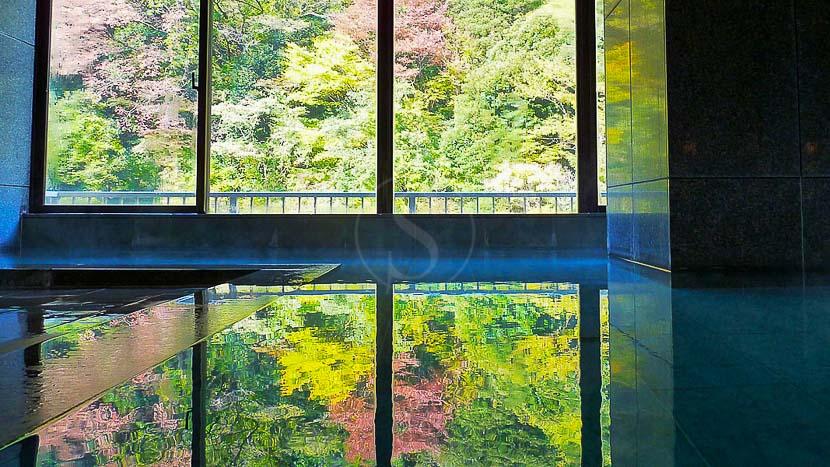 Hakone Pax Yoshino, Hakone Pax Yoshino, Japon