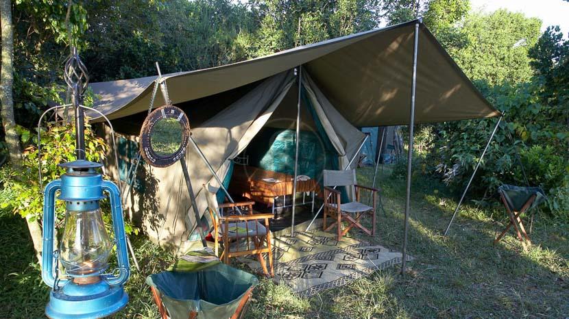 Hammerkop Migration Camp, Hammerkop Camp, Kenya