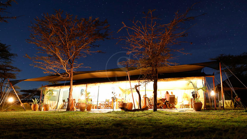 Kicheche Bush Camp, Kicheche Bush Camp, Kenya