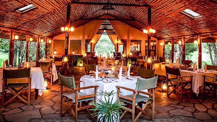 Sekenani Camp, Sekenani Camp, Kenya