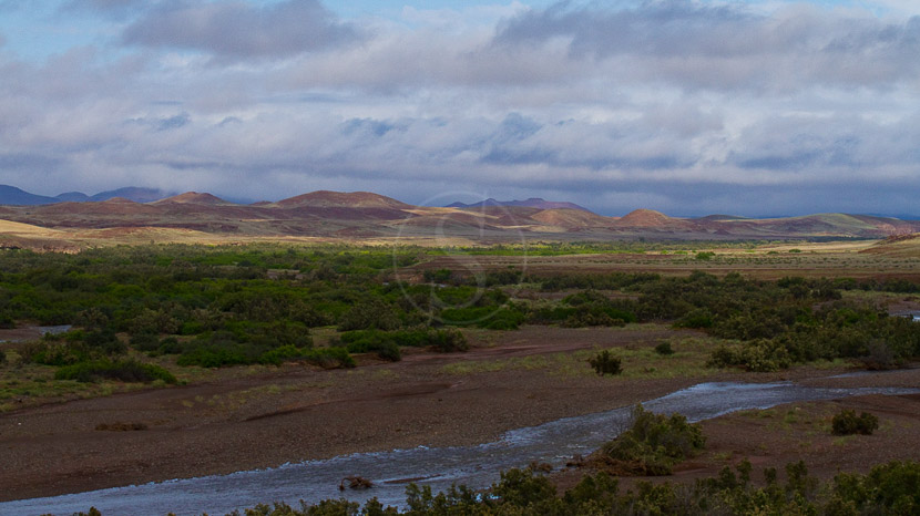 Desert Rhino Camp, Concession de Palmwag, Namibie