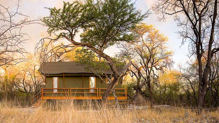 Mushara Outpost, Mushara Outpost, Namibie